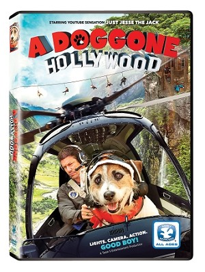A Doggone Hollywood