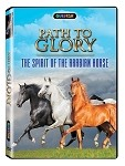 Path to Glory - The Spirit of the Arabian Horse